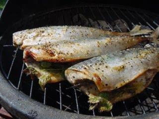 How to BBQ Mackerel With Lemon Recipe